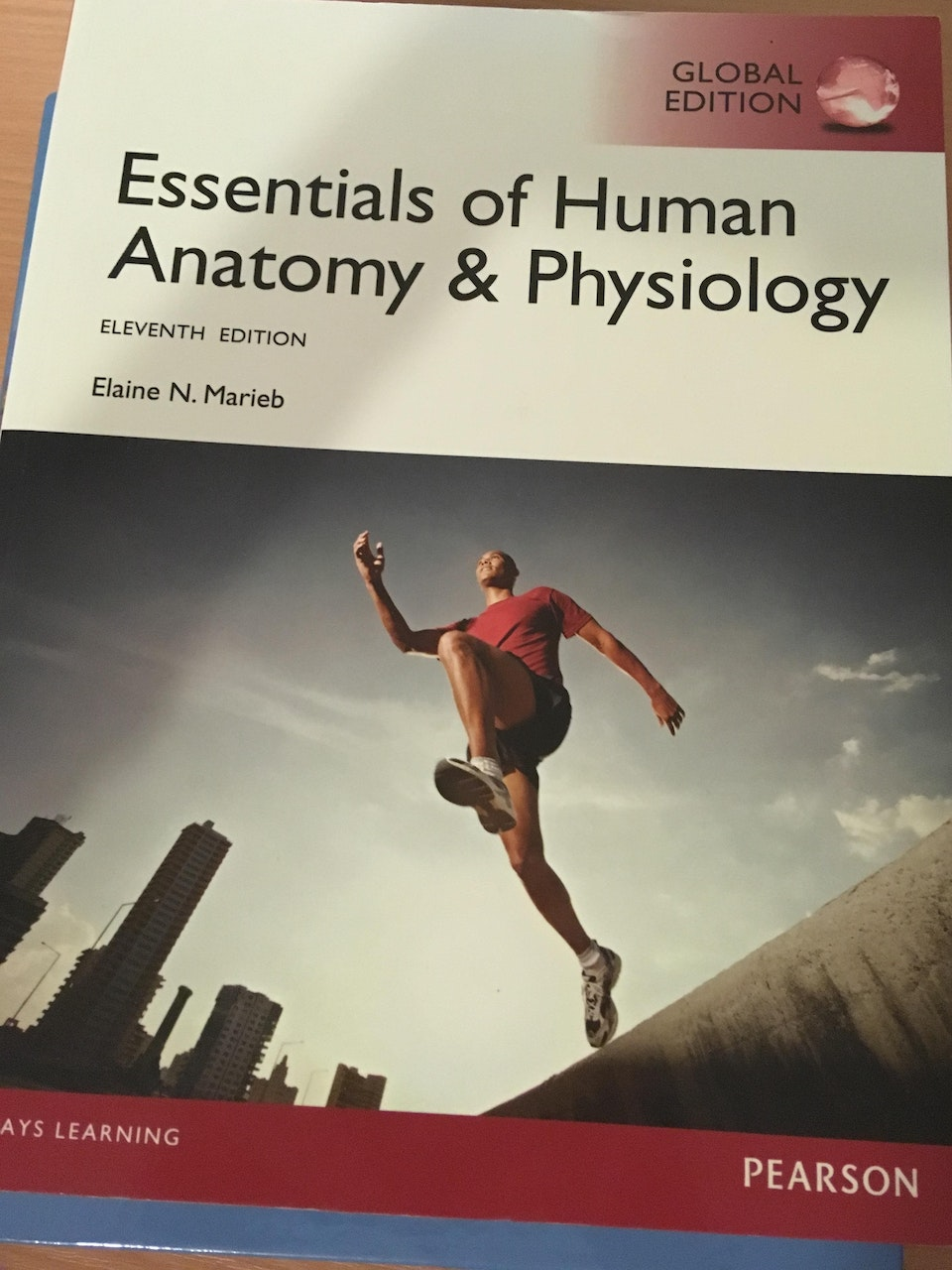 Essentials of Human Anatomy and Physiology | Book Market | Sussex ...